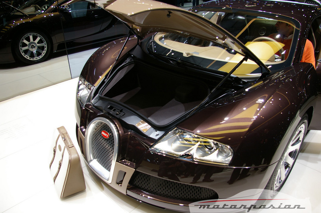 Foto de Bugatti Veyron Hermès en el Salón de Ginebra (14/24)