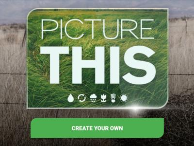Picture This es la nueva App de Sony para crear conciencia ambiental