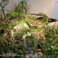 Foto 31 de 96 de la galería museo-automovilistico-de-malaga en Motorpasión