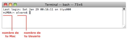 Aplicación Terminal, inicio