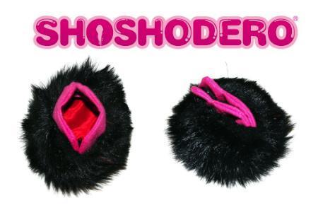 Shoshodero