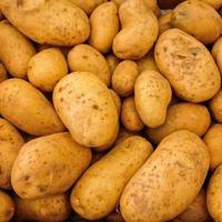 Ingesta de patatas, ¿asociada a mayor riesgo de hipertensión?