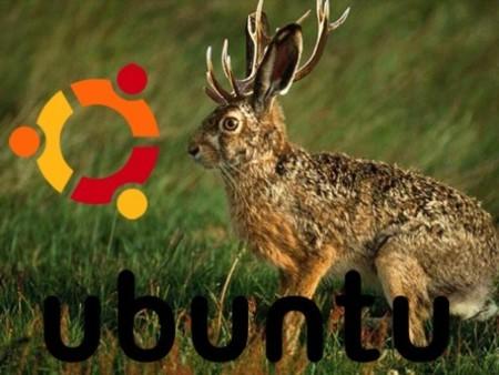 Calendario para Ubuntu 9.04 Jaunty Jackalope