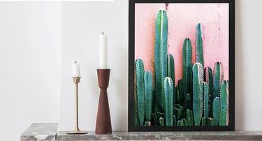 Decorar con cactus: ideas que llenarán de energía y vitalidad los espacios de nuestros hogares