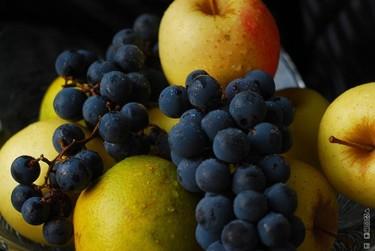 Fruit Fusión 2010