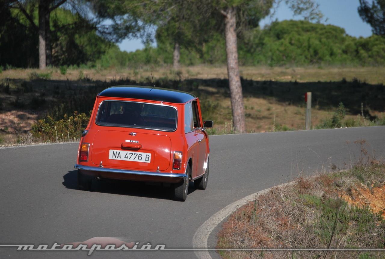 Foto de Authi Mini 850 L (prueba) (57/62)
