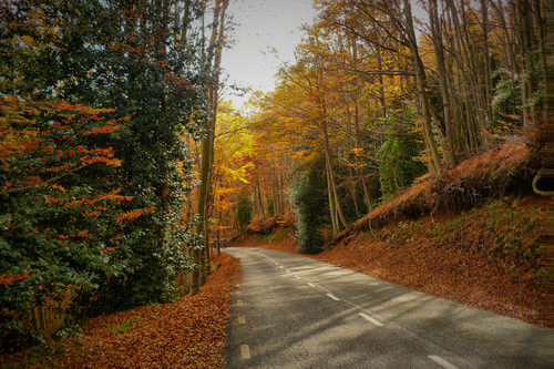 Citas para fotografiar el otoño: el Parque Natural de Montseny (Barcelona)
