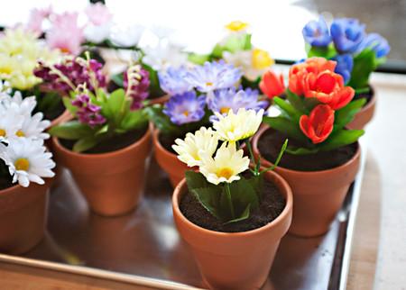 Terrario Flores