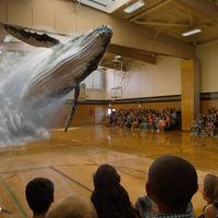 Magic Leap debe presentar un prototipo funcional, los inversores (y nosotros) se han cansado de tanto humo