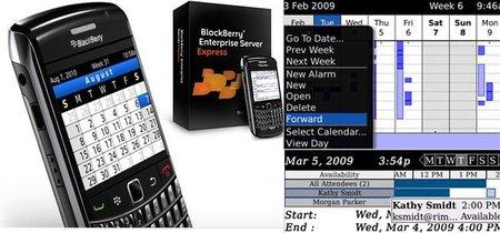 BlackBerry Enterprise Server Express para IBM Lotus Domino
