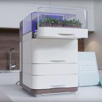 Este dispositivo conectado e inteligente quiere posibilitar que todos podamos contar en casa con un huerto urbano