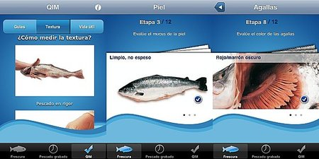 How fresh is your fish, una app para conocer la frescura del pescado