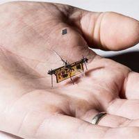 RoboFly, el primer insecto robot que vuela libre sin cables