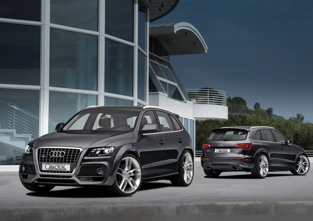 Foto de Audi Q5 Caractere (2/12)