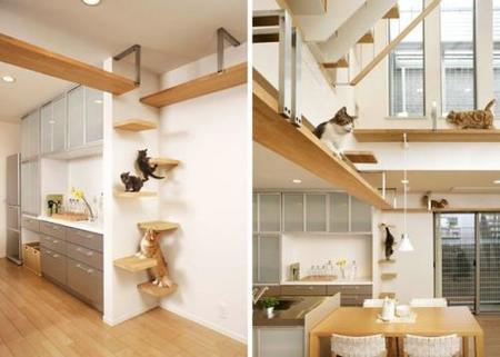 Una escalera de lujo para tus gatos
