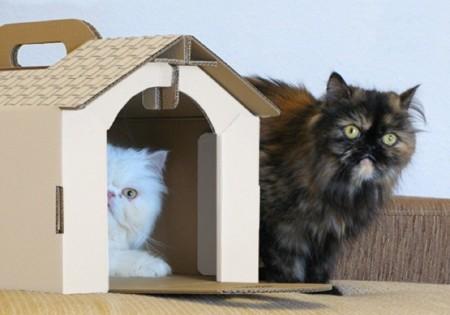 Una casita de cartón para la mascota del hogar