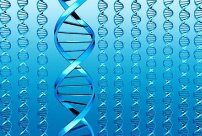 ¿Fichar el ADN de los escolares con mala conducta?