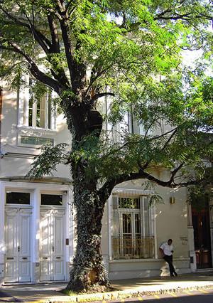 Francis ford Coppola abrirá un hotel boutique en Buenos Aires