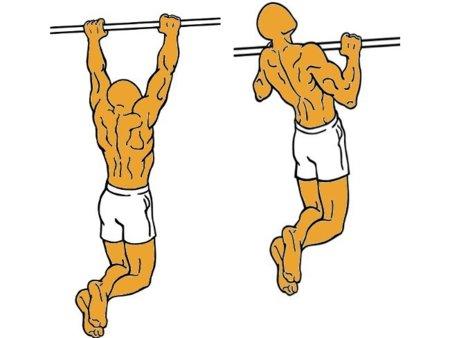 Musculación para corredores (XII): dominadas