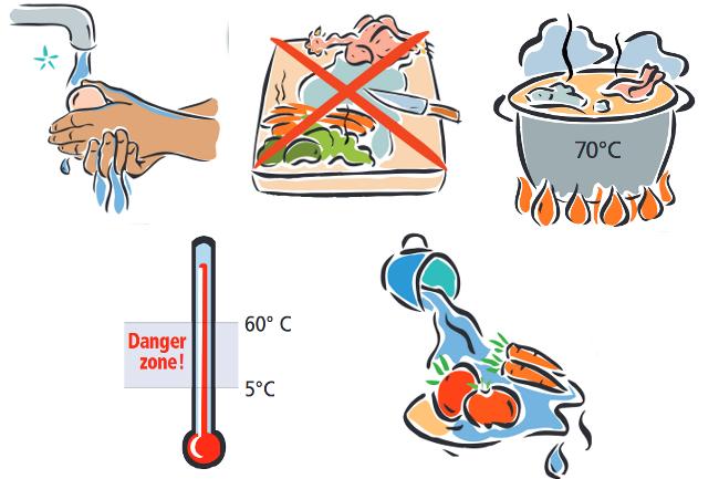Hablemos de ciencia tecnolog a y ambiente d a mundial de for La cocina de los alimentos pdf