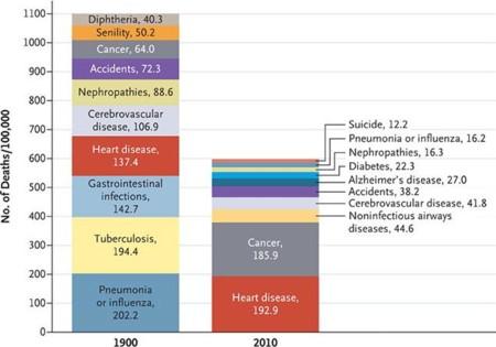 Causas De Muerte Enfermedades