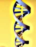 Tarjeta personal con el perfil genético del bebé en breve para España