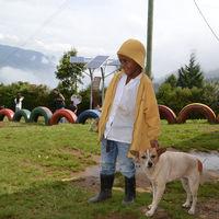 Paneles solares brindarán energía a 11 instituciones educativas en regiones apartadas de Antioquia