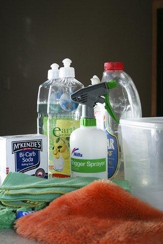La limpieza es necesaria, pero una obsesión por utilizar productos químicos resulta perjudicial para el medio