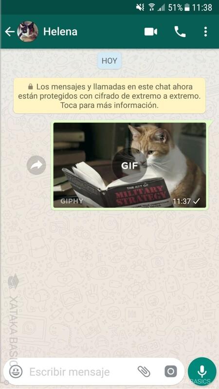 Gif Whatsapp