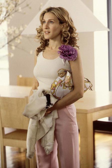 Bolsos De Carrie Bradshaw Sarah Jessica Parker En Sexo En Nueva York 579858221 800x