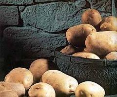Patatas, variedades que más se comercializan en España