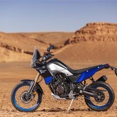 Foto 28 de 53 de la galería yamaha-xtz700-tenere-2019-prueba en Motorpasion Moto