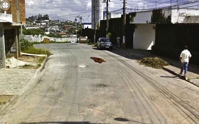 Foto de Google Street View fotos por Jon Rafman (17/32)