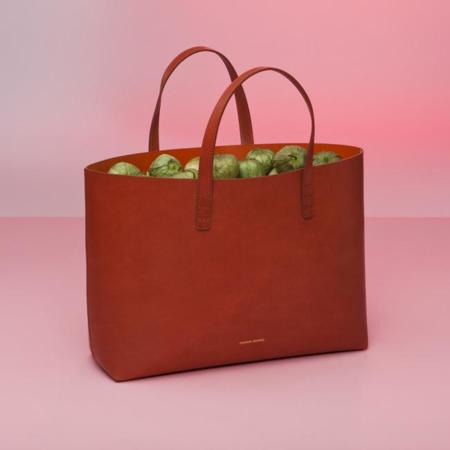 Mansur Gavriel Small Tote Brandy Brick Lookbook