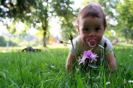 Bebé en el campo