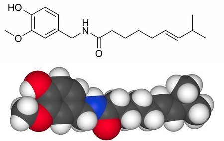 Estructura química de la Capsaicina