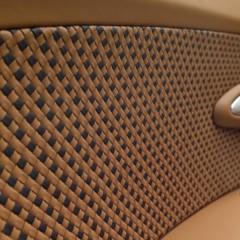Foto 16 de 16 de la galería bugatti-veyron-rembrandt-bugatti-legend-edition en Motorpasión