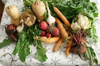 Las diez mejores prácticas para una Agricultura Sostenible (II)