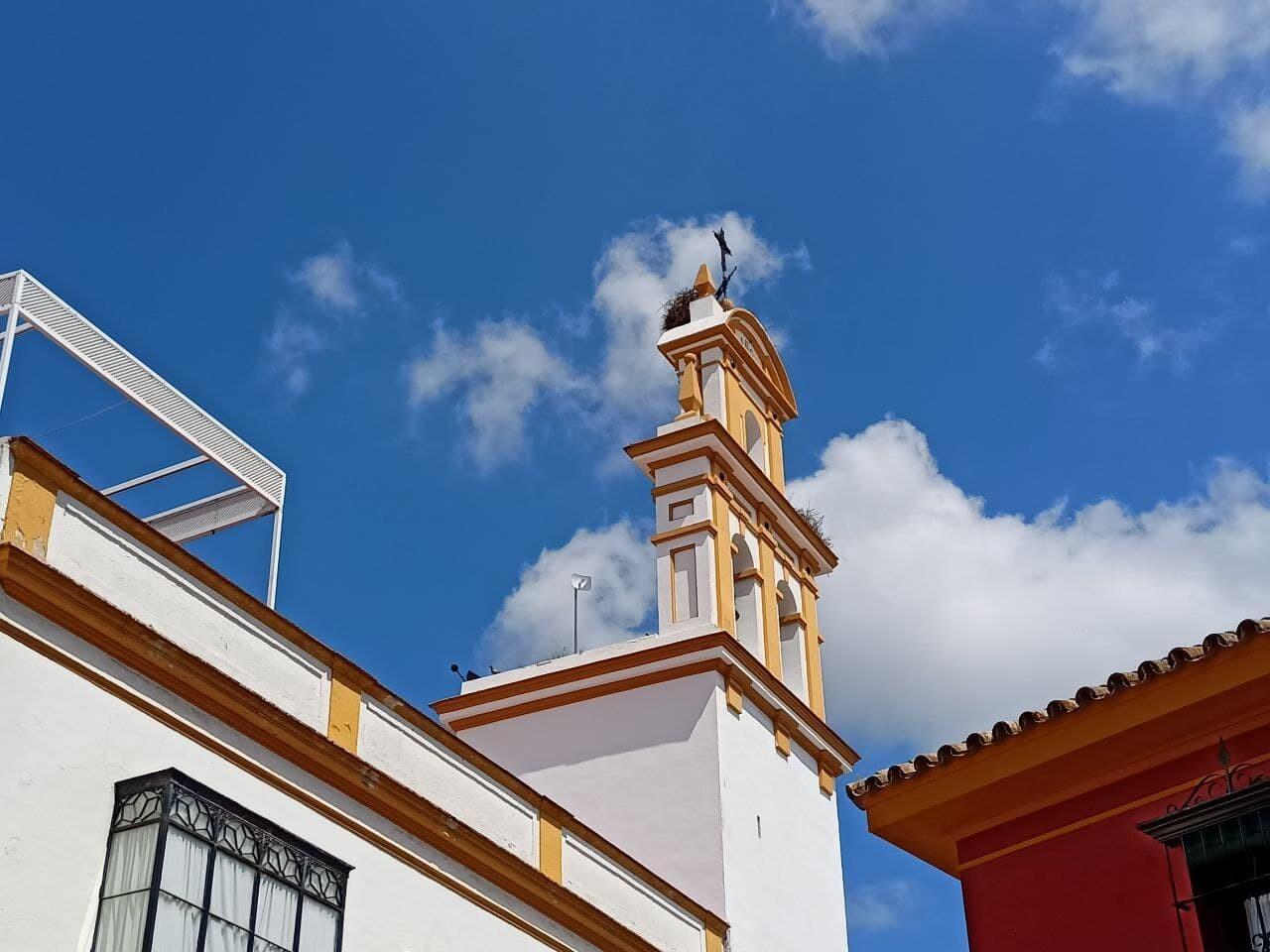 Foto de Más fotografías con el Realme 8 (11/20)