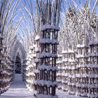 Arte Sella, un lugar en Italia donde arte y naturaleza van de la mano