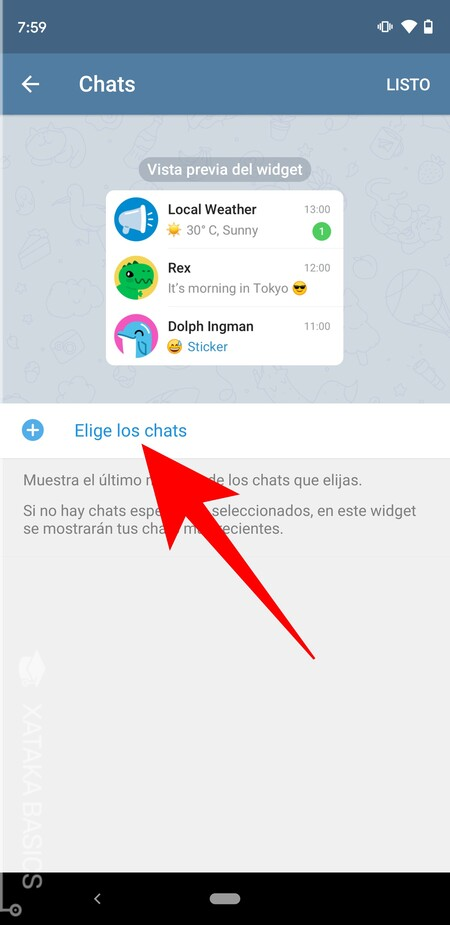 Elige Los Chats