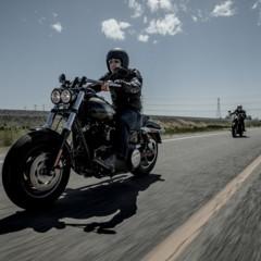 Foto 8 de 24 de la galería harley-davidson-fxdf-fat-bob-2014 en Motorpasion Moto