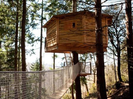 Cabanes las arbres