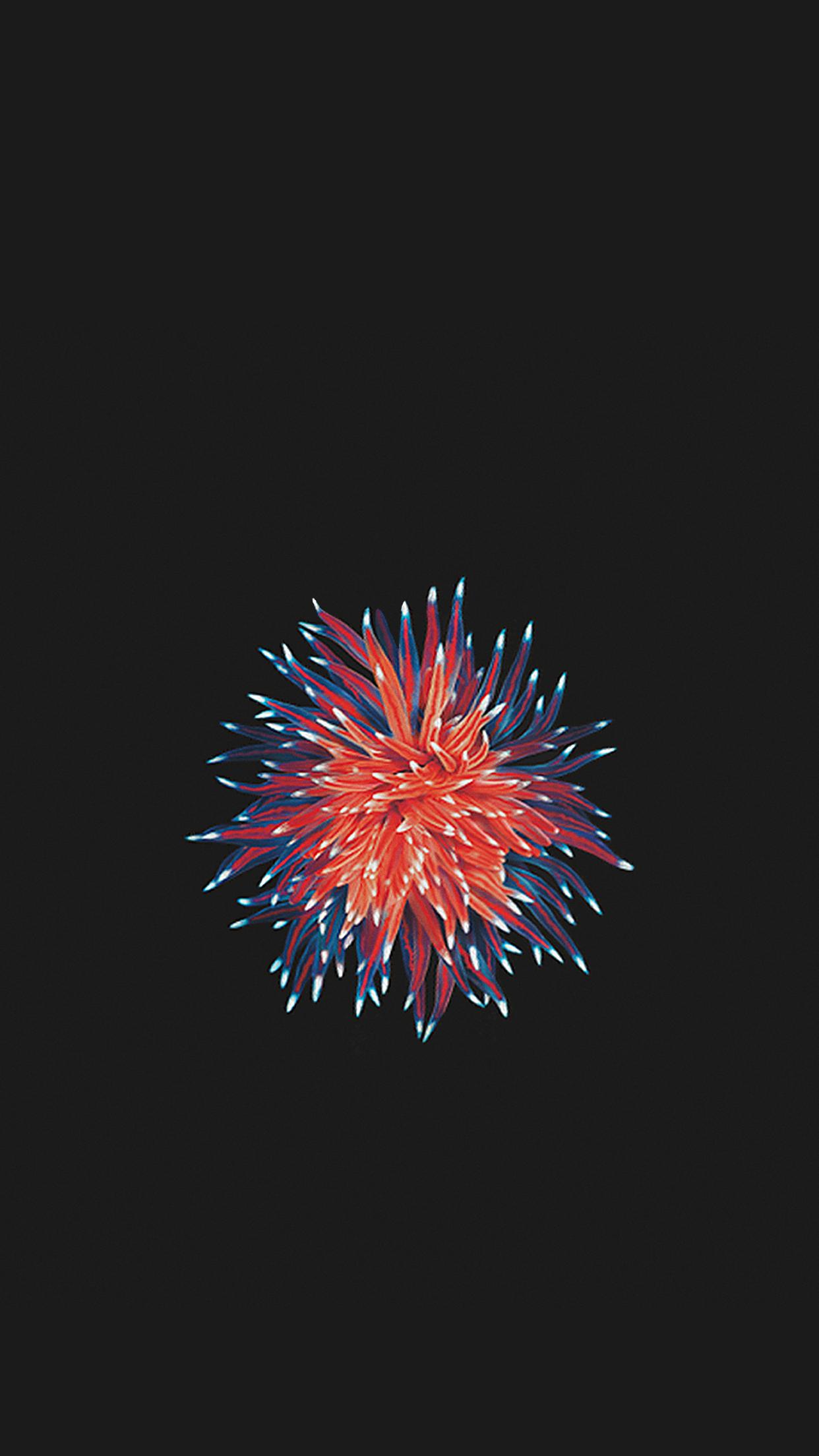 Foto de iOS 10 (29/29)