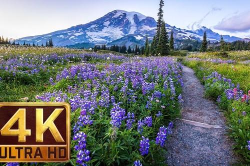 ¿Buscando contenido 4K para presumir de tele? Aquí tienes 9 canales en YouTube con vídeos a la máxima calidad