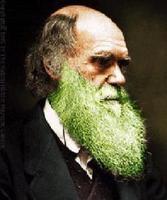Darwin y las barbas verdes