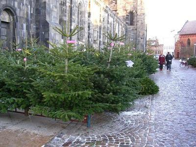 ¿Necesitas inspiración para tu árbol de Navidad? Éste es tu artículo