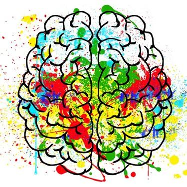 Alimentos que podrían mejorar tu capacidad intelectual