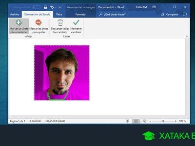 Cómo eliminar el fondo de una foto en Word