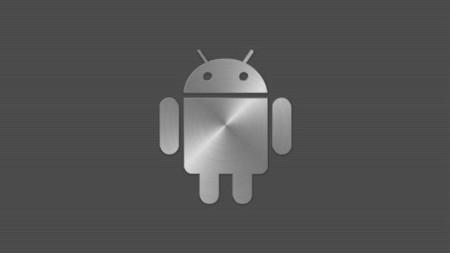 A falta de un nuevo Nexus por parte de LG, ya se habla del primer Android Silver